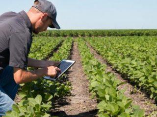 Le numérique dans l'agriculture : pour une meilleure compétitivité | Techniques de l'ingénieur
